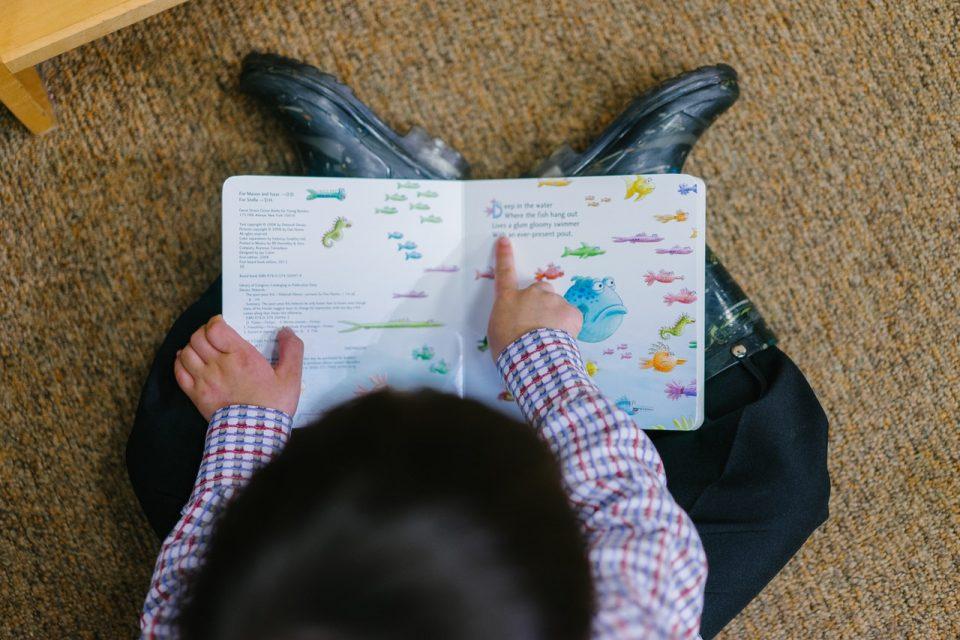 3 Ways to Improve Language Skills Using Picture Books