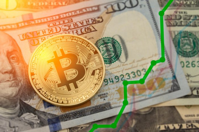 Bitcoin Investment Gains Diverse Outlooks