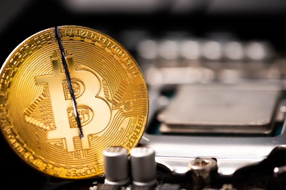 COVID-19 Takes Losses on Bitcoin Halving