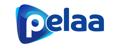 Pelaa casino review logo
