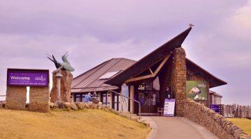 pusat burung laut Skotlandia