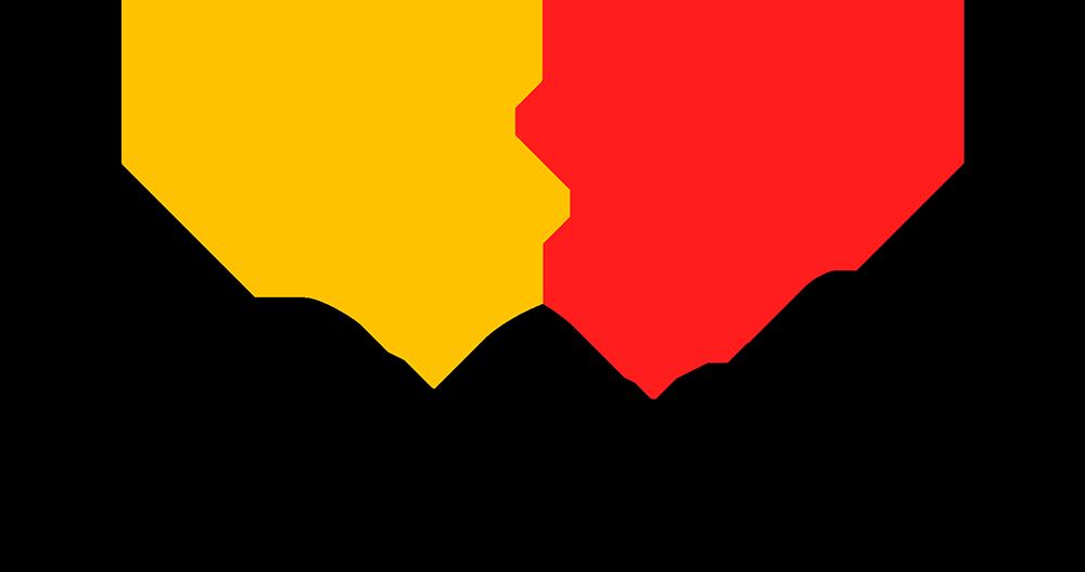 softswiss logo